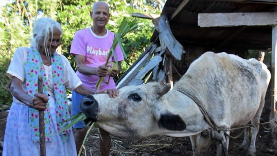 Bhoomawtee Palakdhari, 91 ans :«Lontan, lavi ti pli fasil»