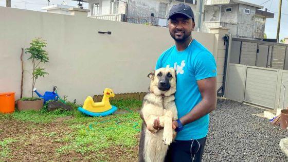 Gael Kalee : le sauveur des chiens errants ouvre une pension canine