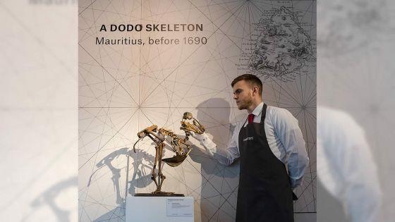 Le squelette du dodo vendu à Rs 21,7 M