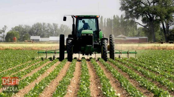 Calamités naturelles: un'Crop Loss Compensation Scheme' pour les planteurs