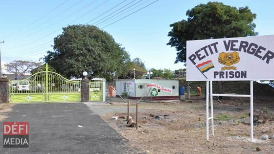 À la prison de Petit Verger : drogue, seringues et cigarettes saisies dans un potager