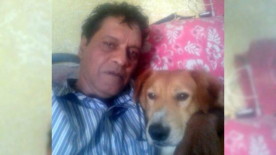 Appel à l'aide d'un habitant de Vacoas : «Mon chien a besoin d'une transfusion sanguine»