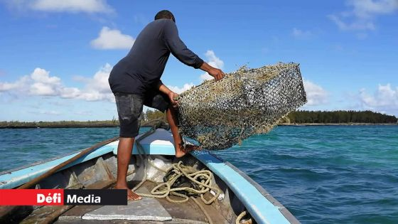 Consultations pré-budgétaires : la Federation of Sea Fishermen Association demande une augmentation de la «bad weather allowance»