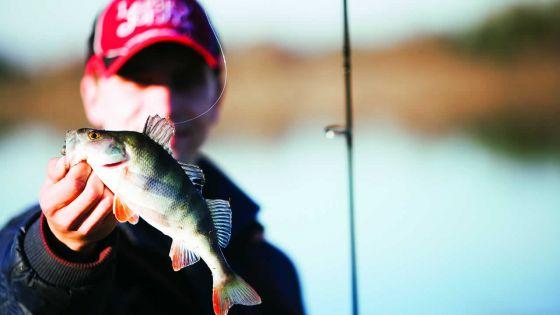 La pêche :une industrie qui vaut toujours son pesant d'or