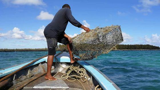 500 pêcheurs bientôt régularisés par le ministère
