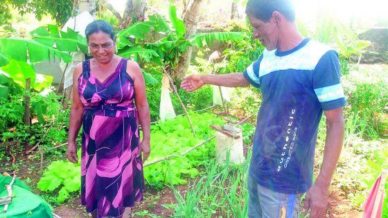 Kumari et Pierre-Noël : la vie en compagnie de trois animaux incroyables