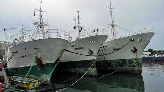 Entrepreneuriat - Alimentation : Rodia Fishing, un parcours contre vents et marées