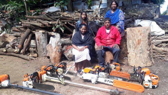 Entrepreneuriat - Sanjay Kissoon : un bucheron qui a le soutien de sa famille