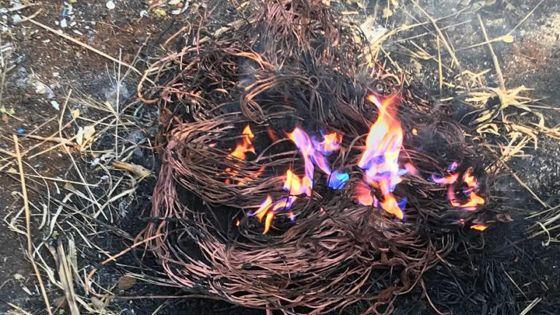 Un trafic de métaux : surpris en train de brûlerdes câbles en cuivre