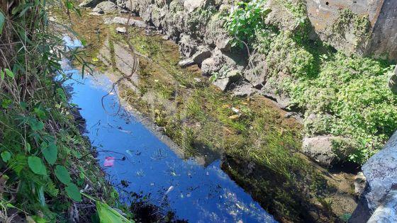 À Curepipe : déversement d'eaux uséesdans une rivière