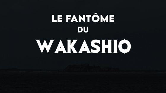 Un an après : le fantôme du Wakashio, un film documentaire à découvrir sur Téléplus ce vendredi soir