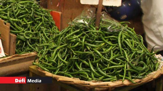 Des piments livrés à Rs 25 vendus à Rs 125 le demi-kilo sur le marché, selon la Small Planters Association