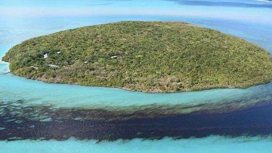 «La marée de fioul provenant du Wakashio a déjà atteint l'Ile-aux-Aigrettes», constate Vikash Tatayah de la MWF