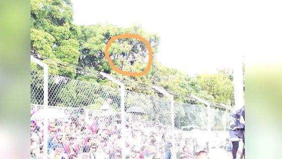Finale de football Maurice/Réunion : deux spectateurs perchés sur un arbre pour suivre la finale