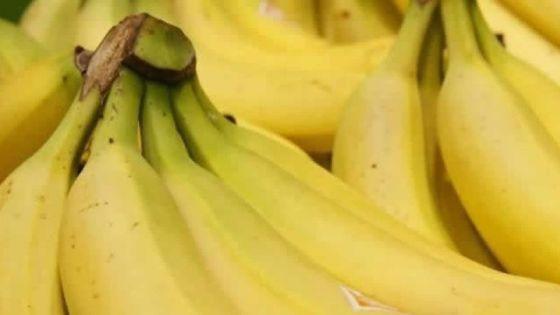 Écroignard : le voleur ne lâche pas les bananes…