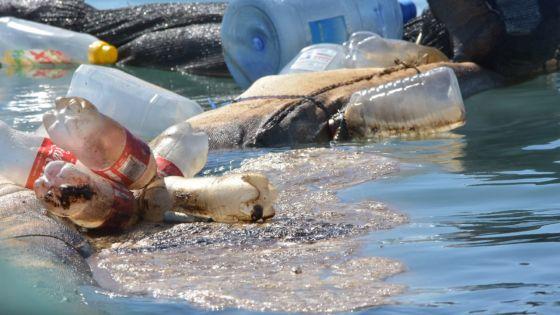 Wakashio : les sites touchés par le 'oil spill' interdits au public