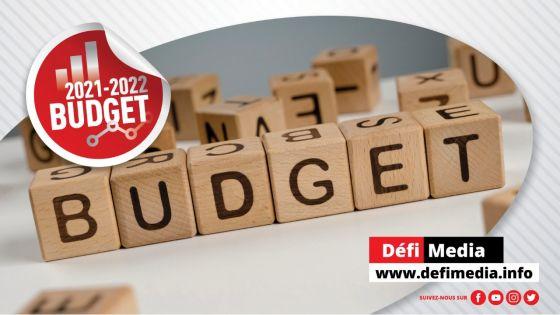 Budget 2021-22 : les principales annonces en fil rouge