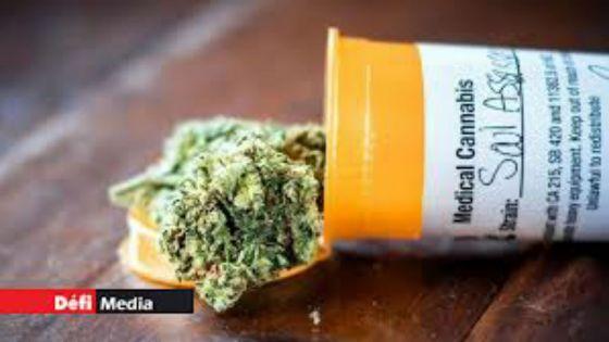 Cannabis à usage médical : le comité technique boucle ses travaux
