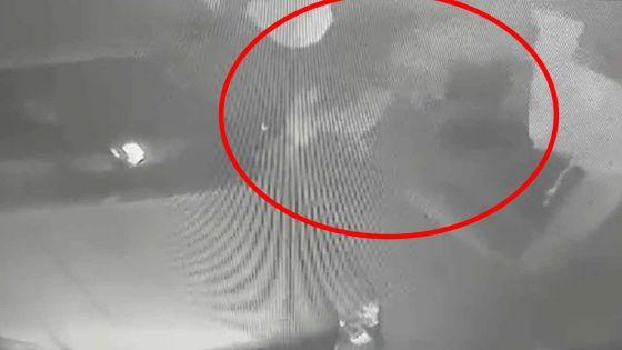 Riche-Terre : filmé en train de voler une batterie alors que le chien remue la queue