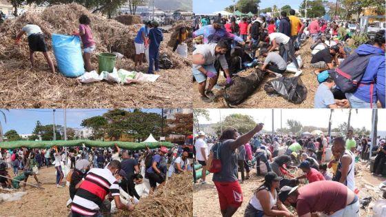 (En images) Fuite de fioul du Wakashio : quatrième jour de mobilisation citoyenne