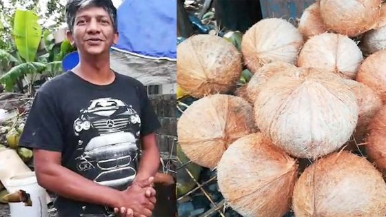 Folklore électorale : Rishi Nuckbunsee a vécu le scrutin avec ses noix de cocos