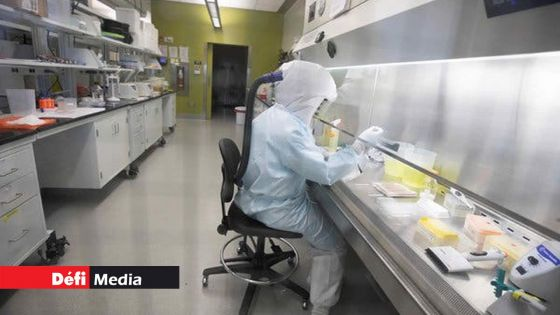 Dans les cliniques : Le Covid-19 Antigen Nasal Swab Test obligatoire
