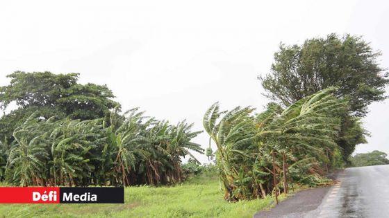 Dépression tropicale : des rafales de plus de 100 km/h attendues à Maurice dans la nuit