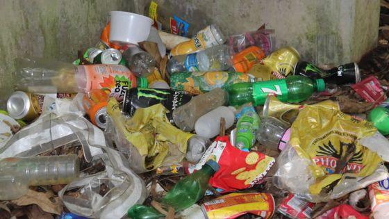 Vers l'interdiction des produits en plastique non biodégradables