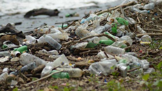 Déversement illégal de déchets : une vingtaine de dénonciations à la Police de l'Environnement depuis mardi