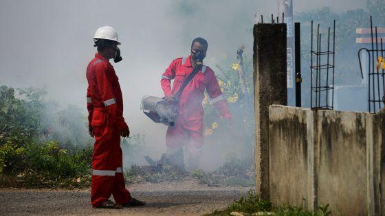 La dengue fait 44 morts au Honduras