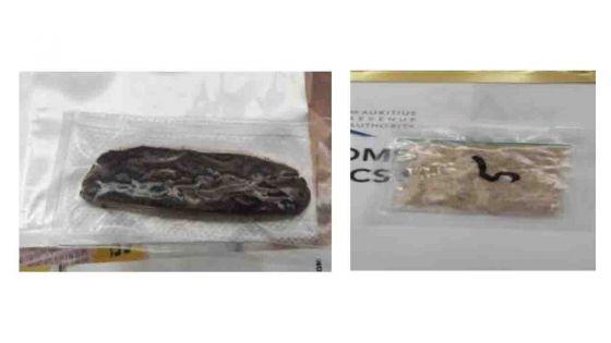 Parcel Post Office : des colis contenant du cristal meth et du cannabis saisis