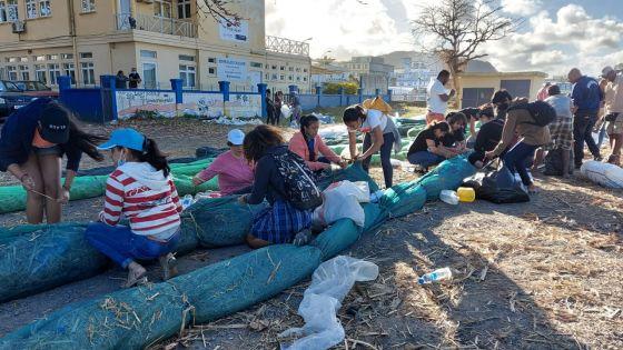 Nettoyage des lagons après le naufrage du Wakashio : 5 000 bénévoles inscrits auprès de l'ONG ECO-SUD