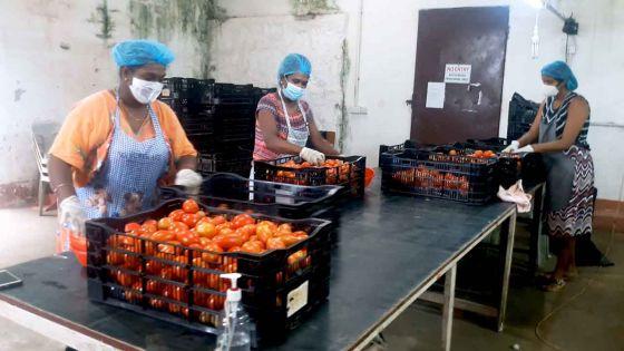 « Top Nature » une entreprise frappée par la crise découvre la solidarité familiale avec les travailleurs