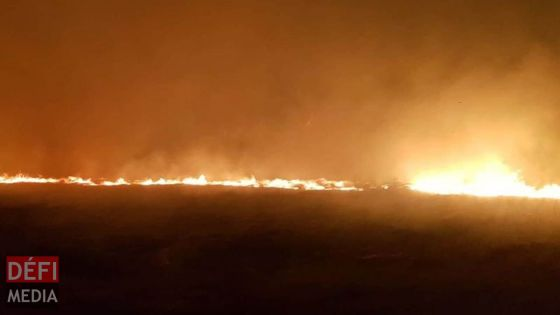 Fond-du-Sac : 100 arpents de cannes partent en fumée