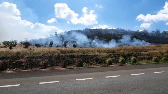 Coromandel : la colline Chapman est la proie des flammes