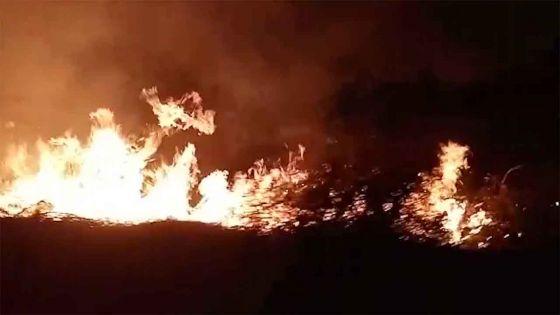 La Tour Koenig : incendie sur un terrain en friche