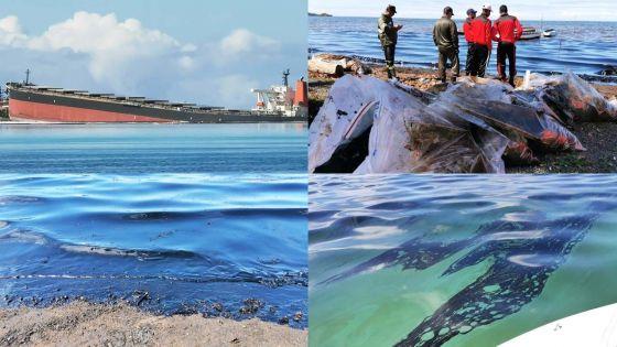 Fuite de fioul du Wakashio : des Mauriciens se mobilisent pour une tentative de grand nettoyage
