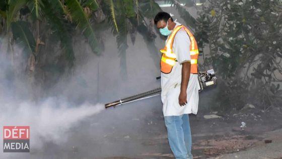 Dengue : cinq nouveaux cas rapportés