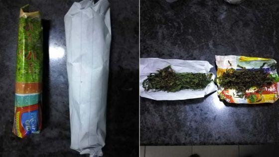 Alma : un suspect vend 10 rouleaux de cannabis à l'Adsu