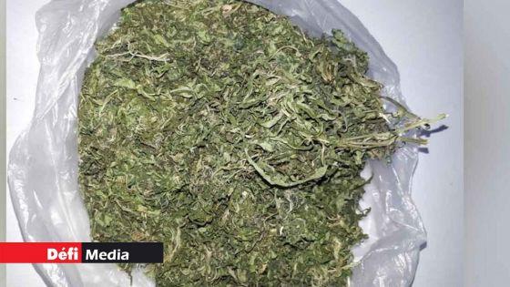 Bambous : saisie de Rs 2 millions de cannabis dans un appartement