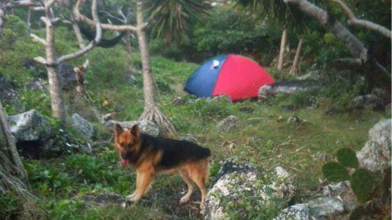 Rodrigues : trésor à Saint-François, le Mouvement indépendantiste rodriguais campe à proximité du site