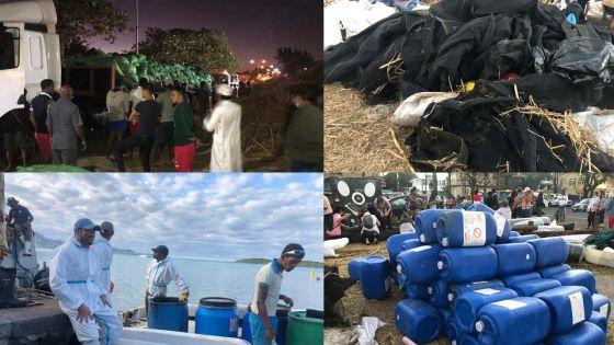 Marée noire : Johaness Group met la main à la pâte
