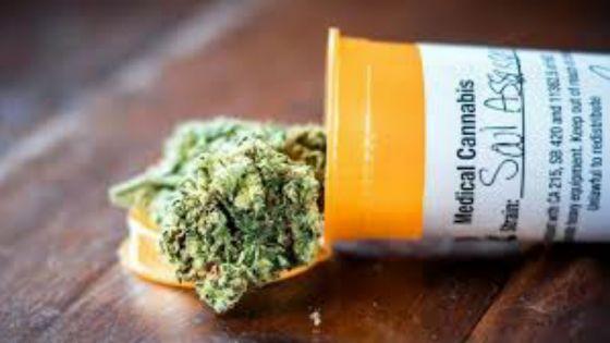 Cannabis à usage médical : la population invitée à soumettre ses propositions au comité technique