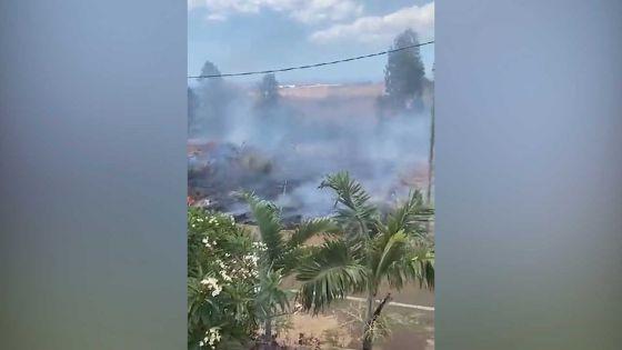 Incendie sur un terrain vague à Coromandel