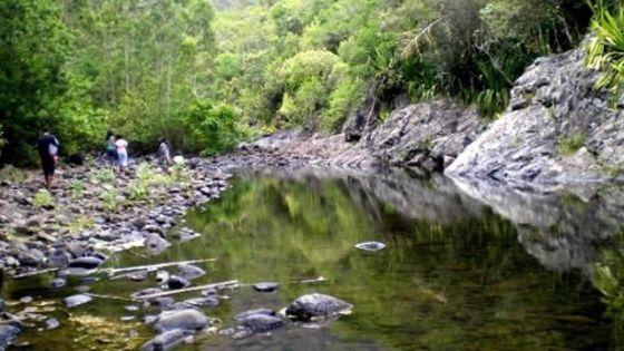 Le Black River Gorges National Park fermé au public