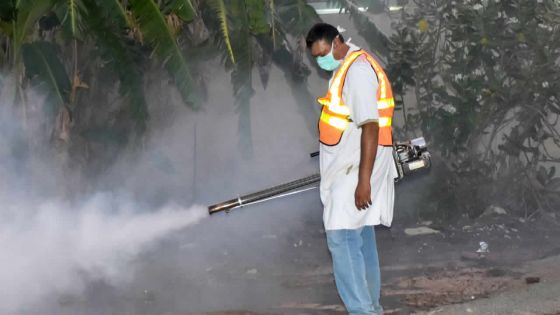 Dengue - 40 cas recensés : les inquiétudes des parents s'amplifient