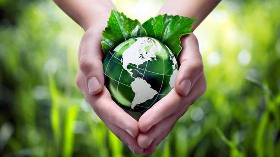 Platform Moris lanvironnman : pour une meilleure protection de l'environnement