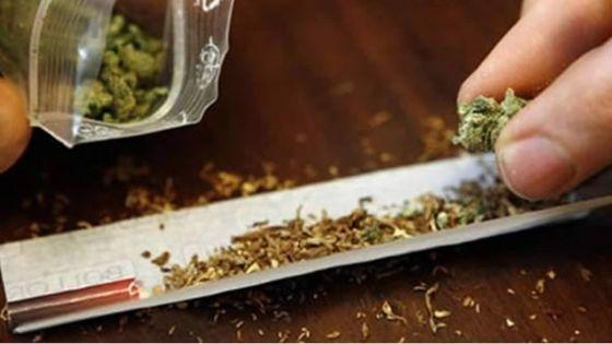Lutte contre la drogue : un nouveau programme lancé