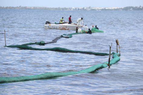 Fuite de fioul du Wakashio : mobilisation des plaisanciers et opérateurs touristiques de l'Est pour réclamer une compensation