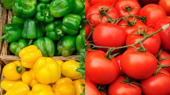 Une tonne de poivrons, 50 kilos de tomates et le système CCTV emportés d'une serre